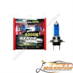 XENON H1 12V 55W S/W